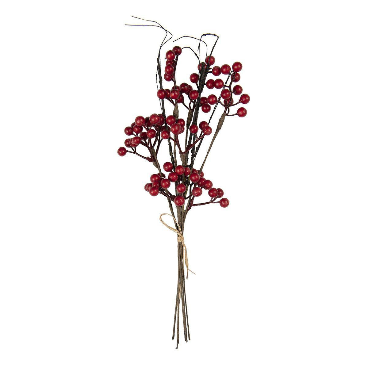 Větvička červených bobulí